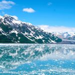 "Alaska Shore Excursions: Take a ""Whale"" of an Adventure in Juneau"