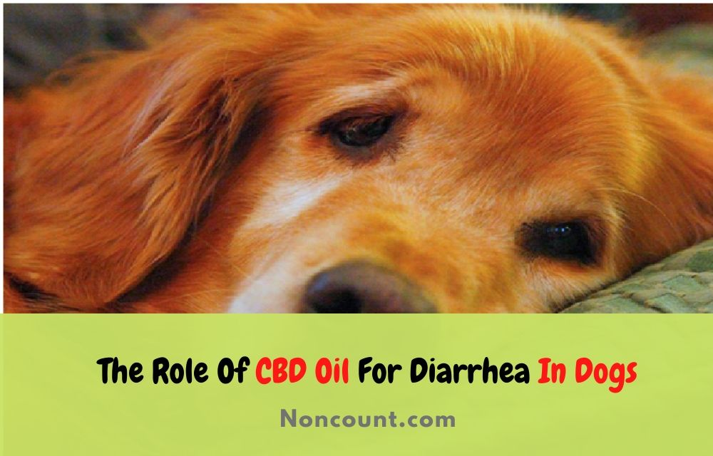 CBD Oil For Diarrhea In Dogs