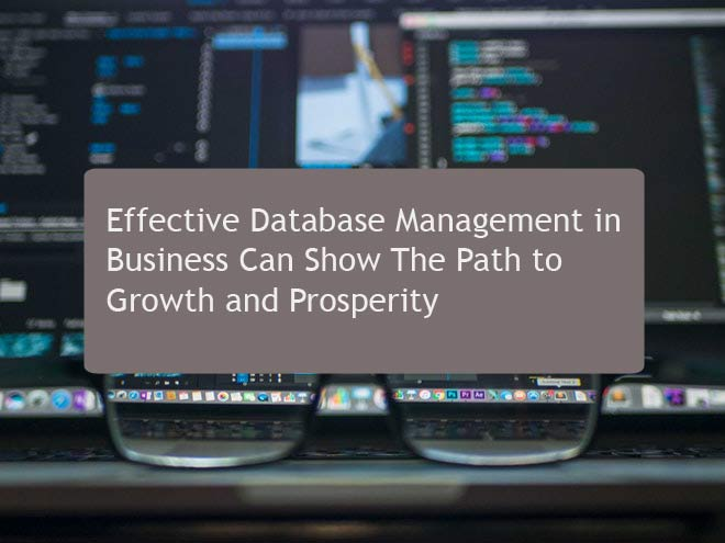 Effective Database Management in Business Can Show The Path to Growth and Prosperity