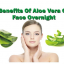 Some of the Benefits of Applying Aloe Vera Gel on Face at Night