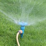 Everything You Should Know About Watering Lawns